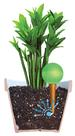 Plantpal Watering Globe Plant Watering System