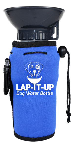 dog water pet products